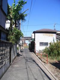 20081101_1c