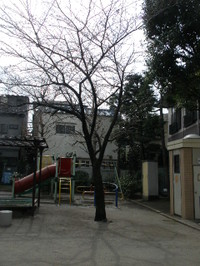 20090320